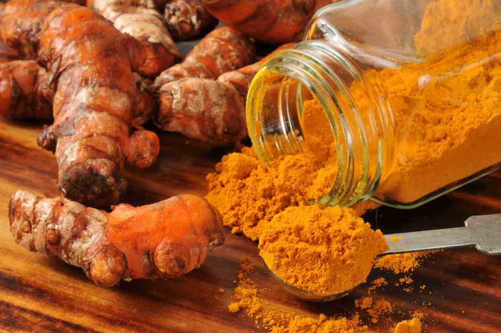 Is Turmeric For Dogs Good? - Ultimate Home Life