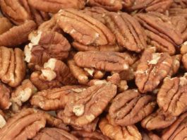 Can Dogs Eat Pecans Or Are Pecans Bad For Dogs