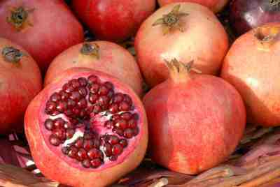 can dogs eat pomegranate