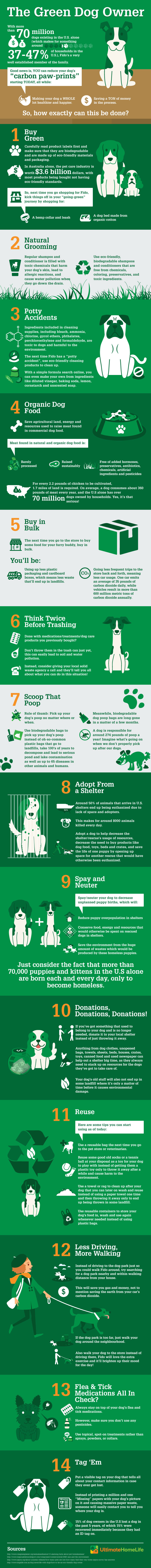 infographic about going green with your dog