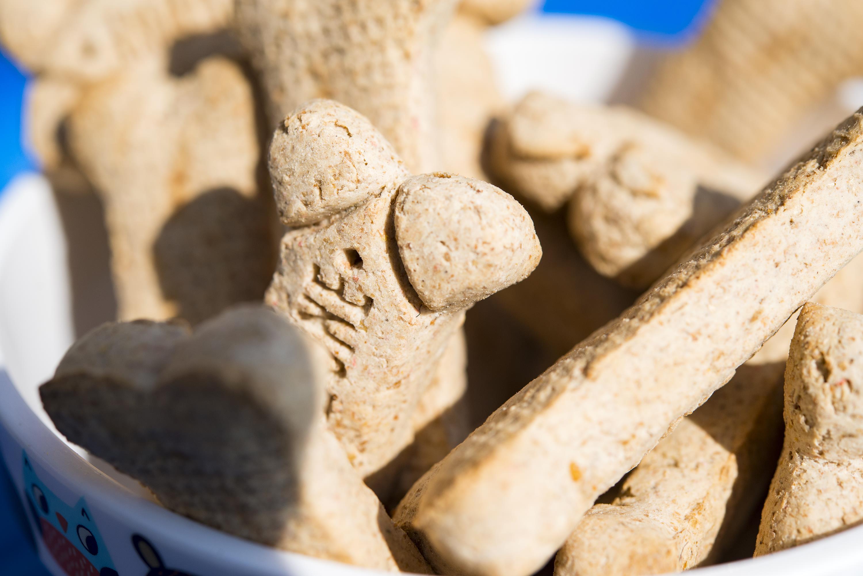 bone shaped treats