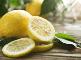 Can Dogs Eat Lemon