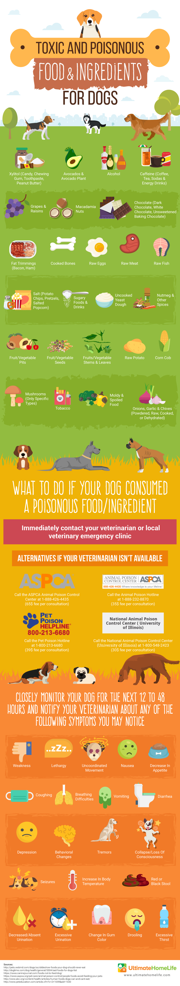 Toxic And Poisonous Food & Ingredients For Dogs