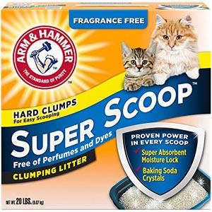 Best Odor Control Cat Litter For Smell (Updated List For 2019) 9