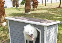 Petsfit Wooden Dog House