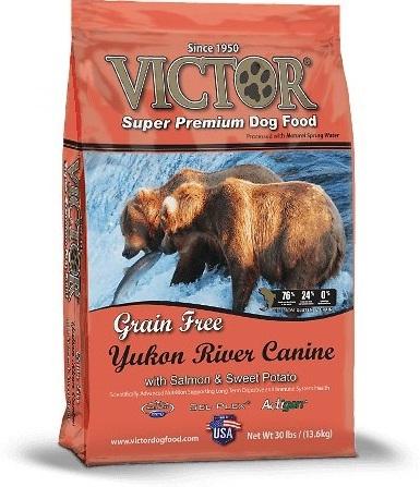 Yukon River Canine