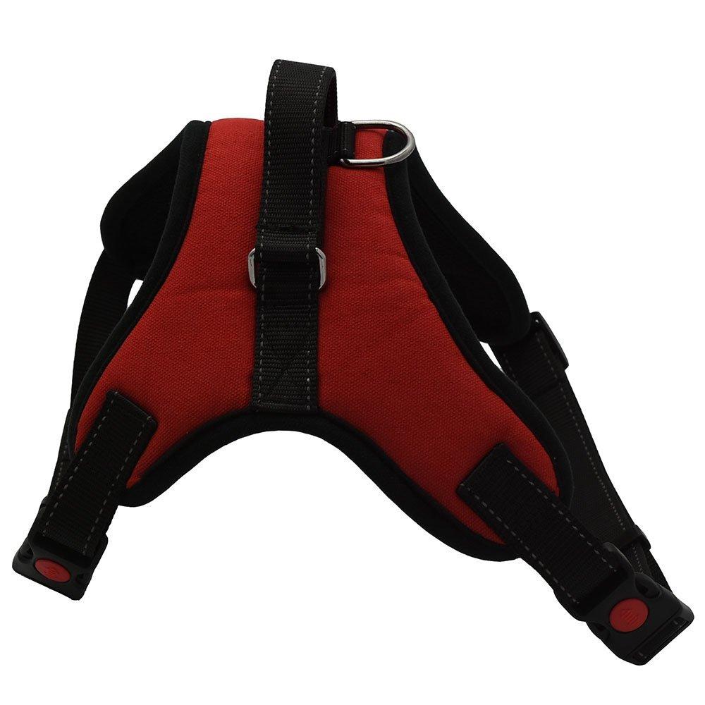 ARIKON No-Pull Harness