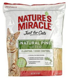 Best Scented Cat Litter for Odor Control