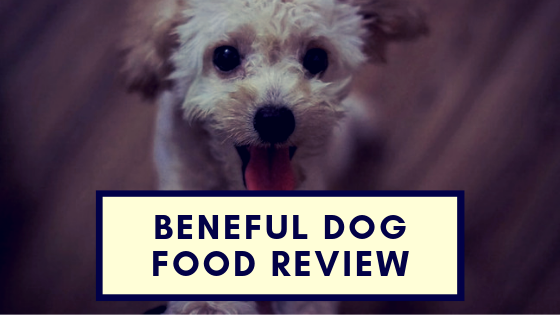 Beneful Dog Food Review 2018 One Of Nestle Purina S Best Brands
