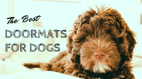 Doggie Doormats Best Doormats For Dogs In 2018 Ultimate Home Life