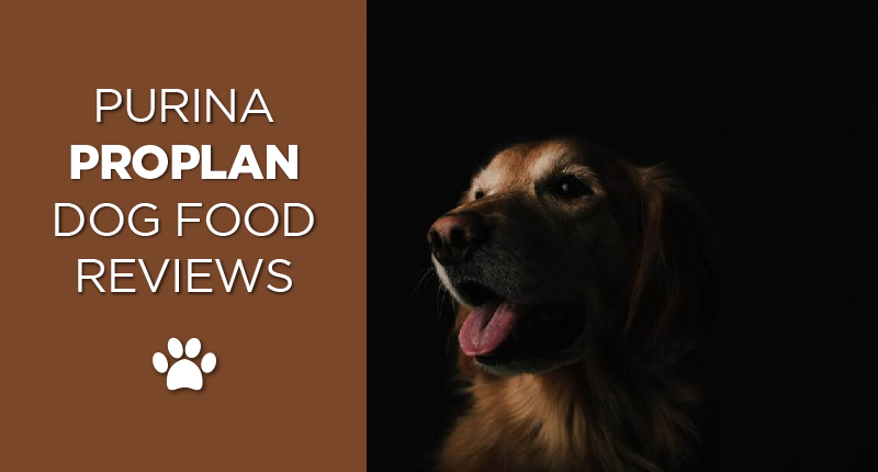 Purina Pro Plan Review The Power Of A Dog Food Giant S Name
